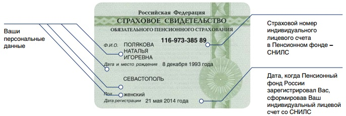 Анкета застрахованного лица для получения СНИЛС (форма АДВ-1) в 2017 году